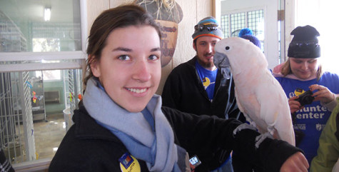 Students on the service trip assisted with a variety of pets, including birds and pot-bellied pigs.
