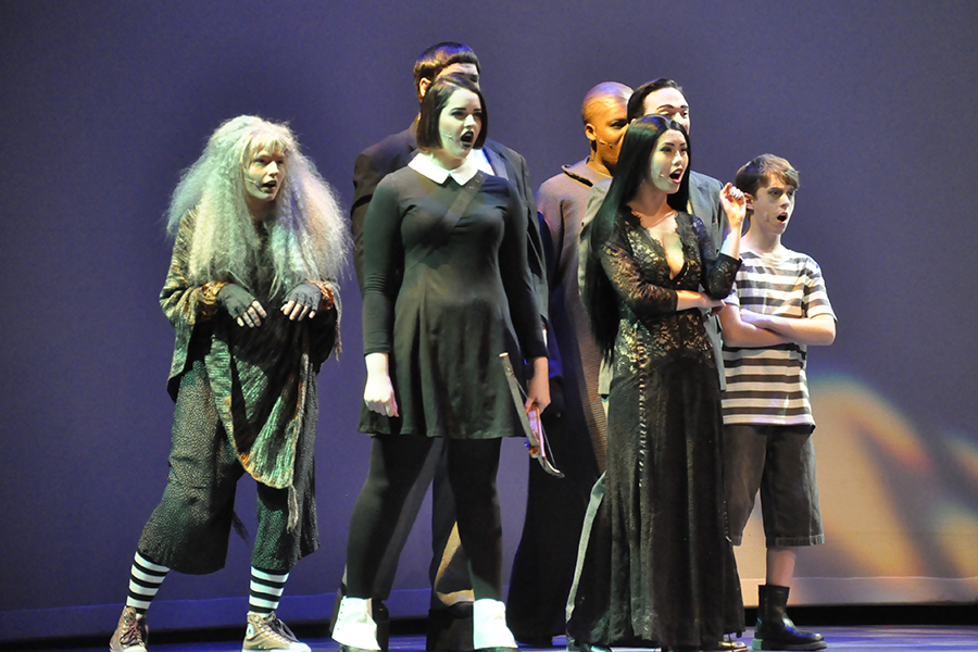 Members of the cast of 'The Addam's Family: A New Musical Comedy