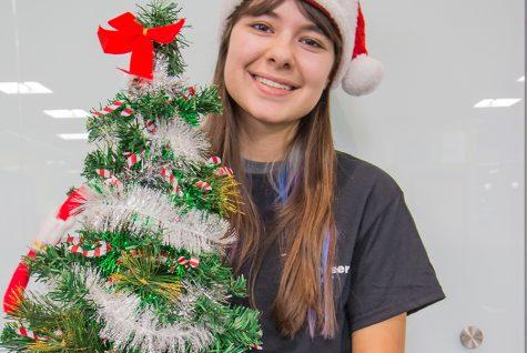 Santa's Wish List makes holiday happier for many