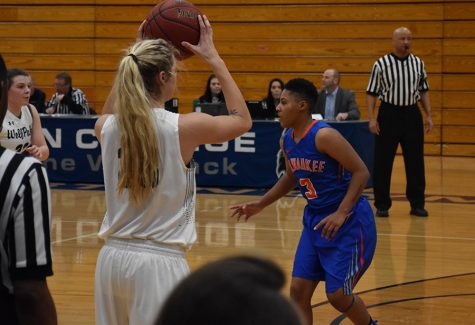 Madison College women's basketball team falls to Milwaukee