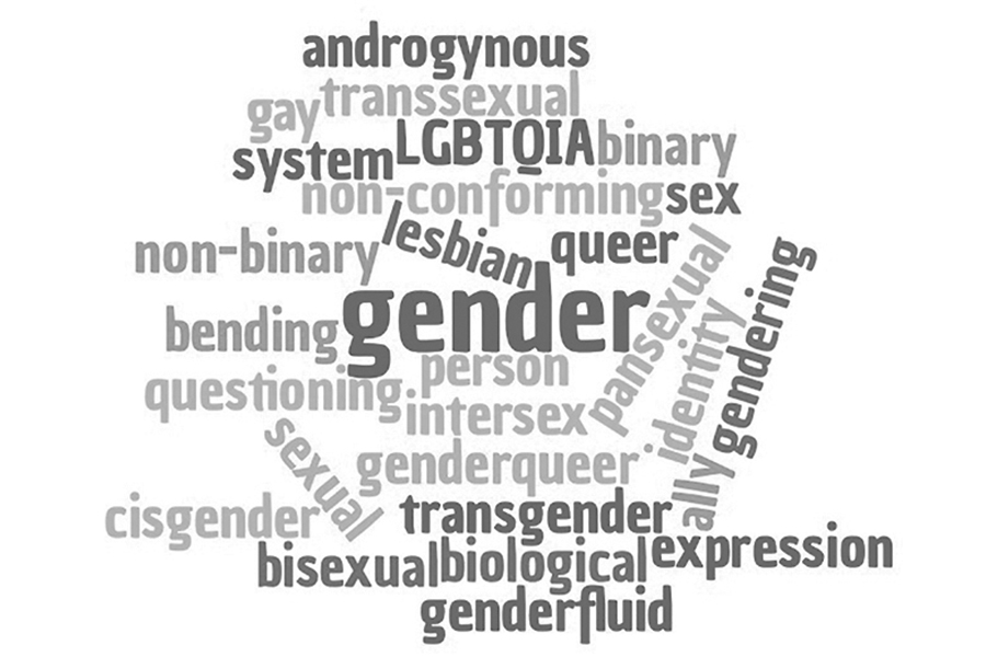 Modern+vocabulary+of+gender