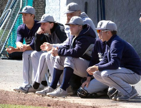 Members of the Madison College baseball team watch their teammates in the field during a game from the 2019 season. This year, both the softball and baseball teams are feeling the disappointment of a lost season.