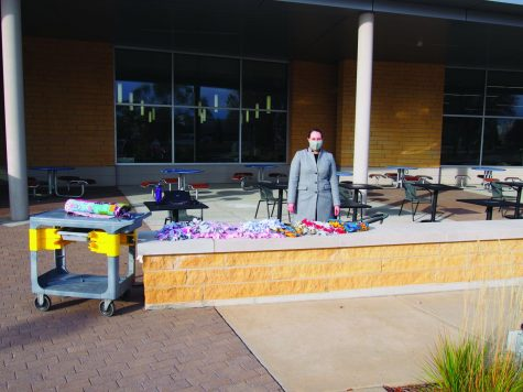 Volunteer Center advisor Brianna Stapleton-Welch stands with the dropped off cat beds outside the Truax Campus.