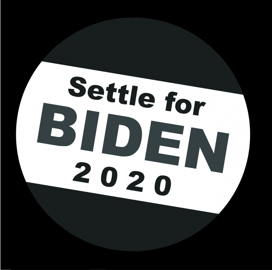 You settled for Biden. Now what?