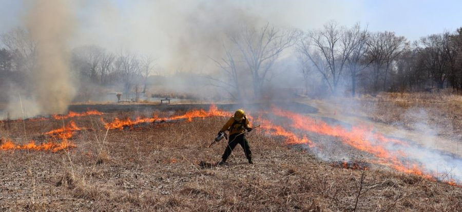 A controlled burn at the Aldo Leopold Nature Center.